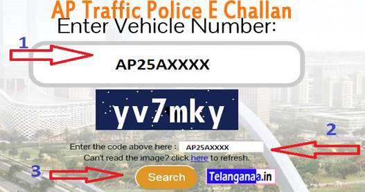 www.police.govt pay for instructions